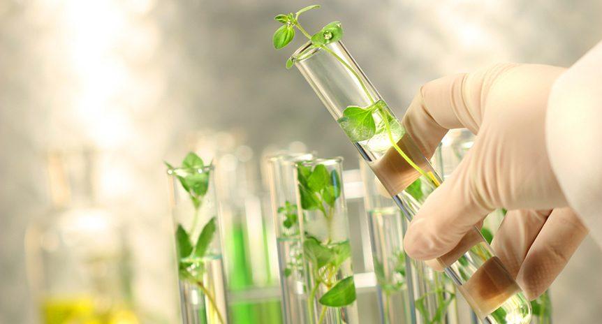 Dược phẩm gen trong tương lai